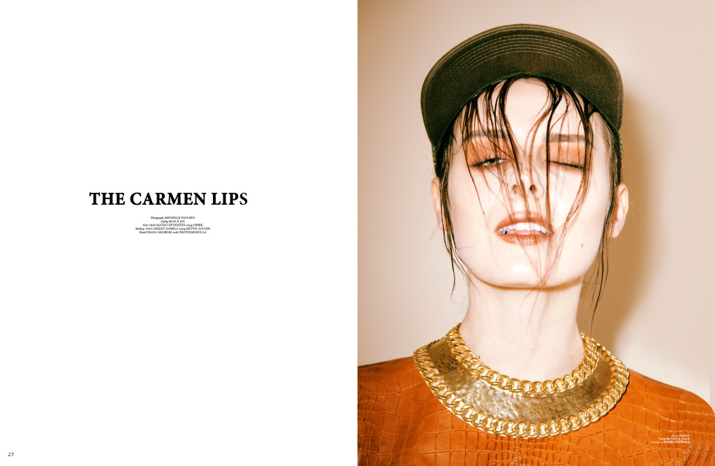 thecarmerlips-01